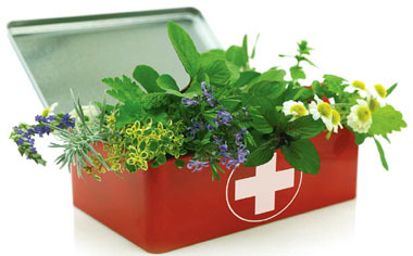 Top Ten Benefits of Herbal Medicine