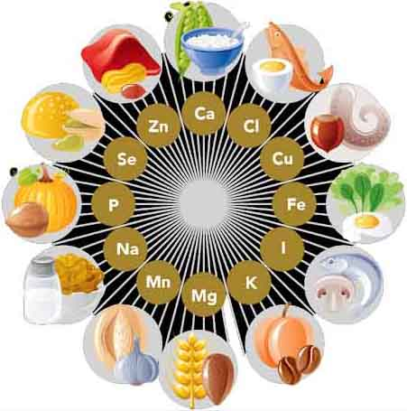 different types of food source for different types of minerals
